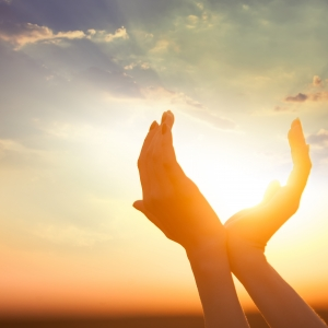 Karma Yoga, Higher Purpose, and Gratitude