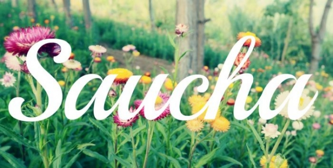 March: Living Saucha