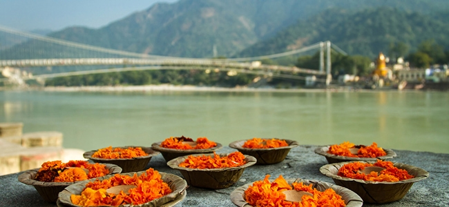 The Bridge To Rishikesh