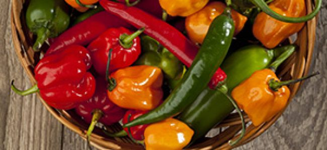 YOGALEAN: A Dose of Hot-and-Spicy