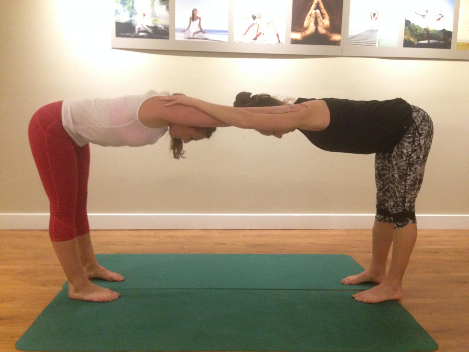Teachers Notebook: Partner Poses  YogaFit Yoga Teacher Training