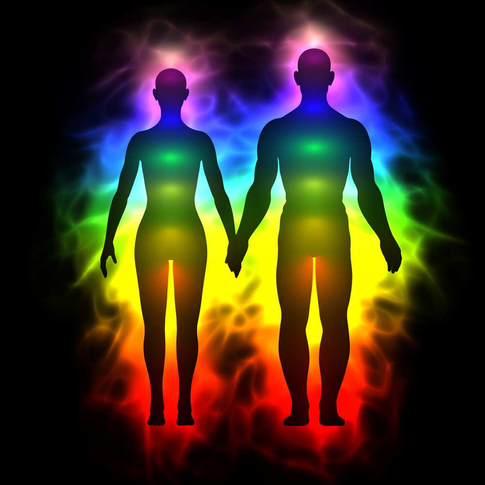 YogaFit HealthCare 2: Examining the Subtle Body