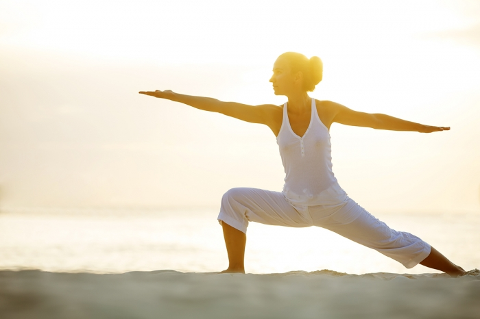 YogaFit Restorative